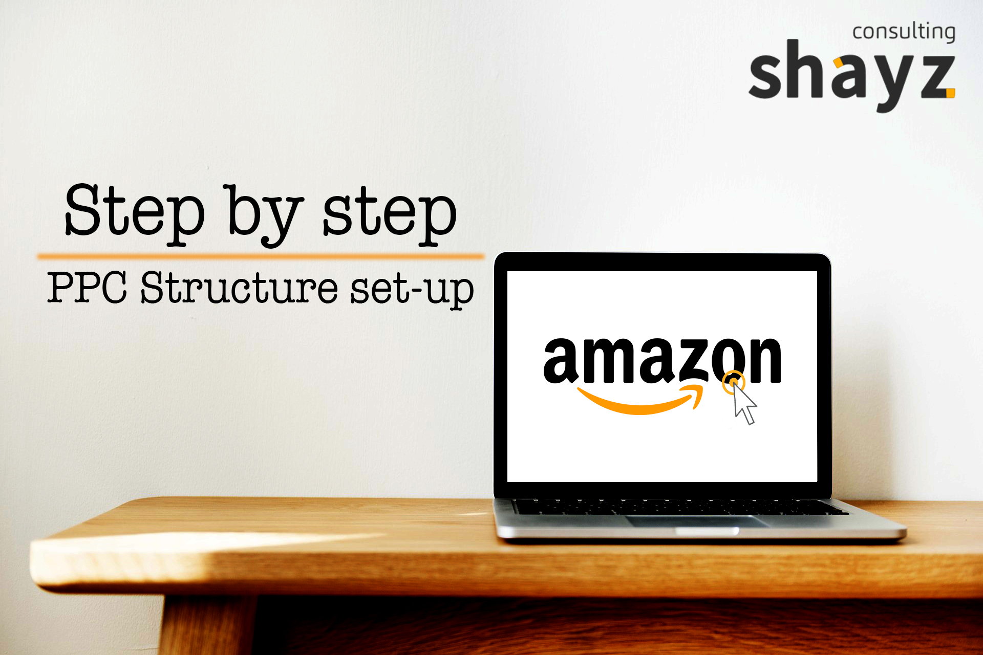 """Step by Step"" PPC Structure set-up"